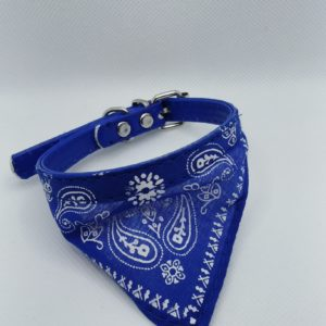 COLLAR CON PALIACATE MED